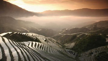 Random: Amazing Rice Terraces Asia