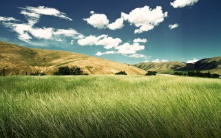 Random: Grass Field Hills & Clouds