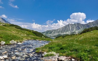 Mountains Grass Creek & Stones wallpapers and stock photos