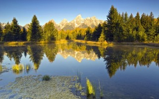 Mountains Trees Lake & Grass wallpapers and stock photos
