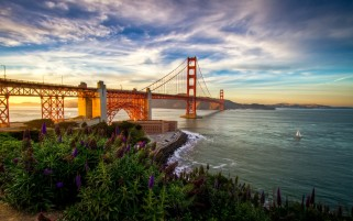 Golden Gate Bridge Flowers Sea wallpapers and stock photos