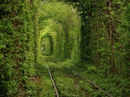 Rail Way Tunnel Ukraine Nature wallpapers and stock photos