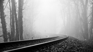 Random: Rail Road Fog & Dark Forest