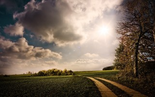 Clouds Trees Path & Fields wallpapers and stock photos