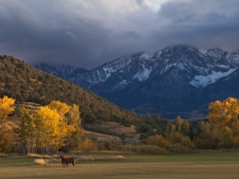 Mountains Scenery & Horses wallpapers and stock photos