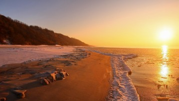 Sunset Ocean Shore Hill Plants wallpapers and stock photos