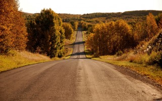 Long Hilly Road & Autumn Trees wallpapers and stock photos