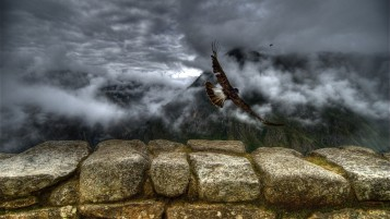 Clouds Bird Stones Wall wallpapers and stock photos