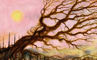 Roots Sun & Branches Painting wallpapers and stock photos
