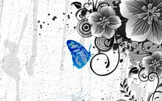 Blue Butterfly & Gray Flowers wallpapers and stock photos