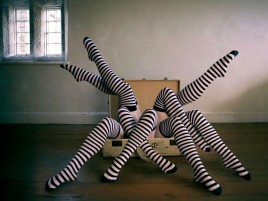 Legs Striped Black & White wallpapers and stock photos