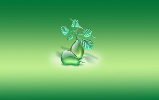 Green aqua pears wallpapers and stock photos