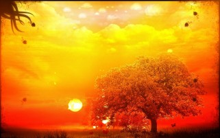 Random: Orange Tree & Yellow Sky