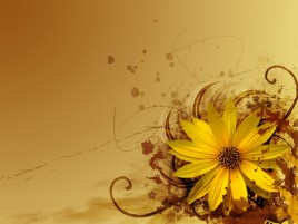 Yellow Flower Abstract wallpapers and stock photos