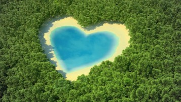 Water Heart & Sand Forest wallpapers and stock photos