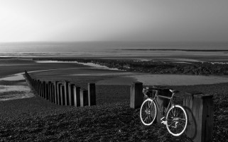 Monochrome Bicycle Beach wallpapers and stock photos
