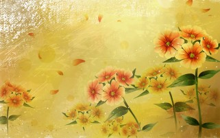 Pink & Yellow Flowers Blossoms wallpapers and stock photos