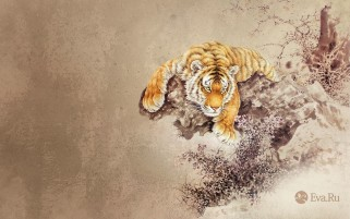 Tiger Abstract wallpapers and stock photos
