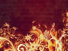 Fire Flowers & Wall wallpapers and stock photos