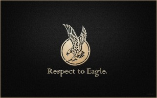 Respect to Eagle! wallpapers and stock photos