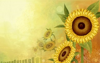 Blazing Sunflowers wallpapers and stock photos