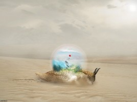 Snail Desert Globe Fantasy wallpapers and stock photos