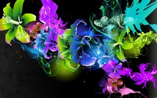 Colorful Blossoms Explosion wallpapers and stock photos