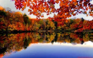 Autumn Forest River Side wallpapers and stock photos