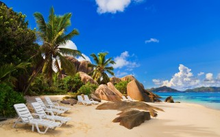 Palms Sand Rocks Lounger Ocean wallpapers and stock photos