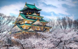 Osaka Castle Japan wallpapers and stock photos