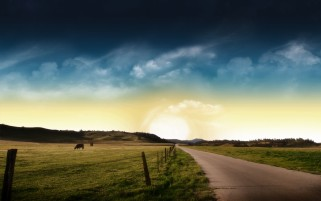 Sky Road Fences Animals Field wallpapers and stock photos