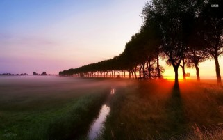 Sunset At Foggy Field wallpapers and stock photos