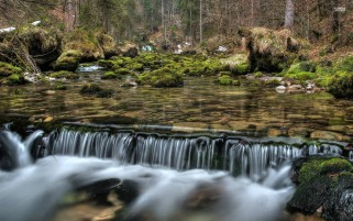 Forest Waterfall Stones Moss wallpapers and stock photos