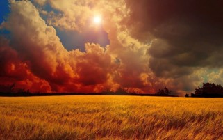 Random: Red Clouds Sun & Wheat Field