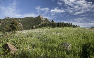 Flatirons Colorado Meadow wallpapers and stock photos