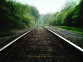 Rail Road Tracks & Forest wallpapers and stock photos
