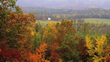 Next: Autumn Tennessee National Park