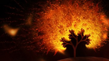 Random: Abstract Flames Tree Sparks