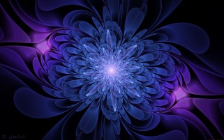 Fractal Blossom Lightning wallpapers and stock photos