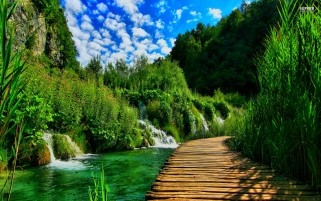 Plitvice Lake Bridge wallpapers and stock photos
