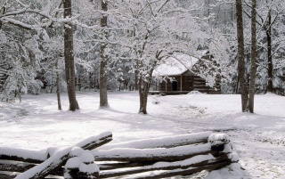 Carter Shields Cabin wallpapers and stock photos