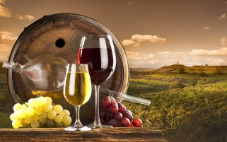 Grapes & Wine wallpapers and stock photos