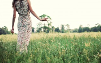 Girl on Spring Field wallpapers and stock photos