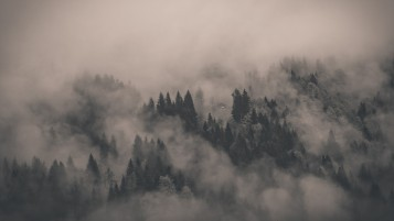 Misty Mountain Landscape wallpapers and stock photos