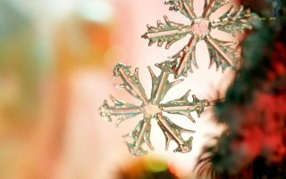 Spangle Flake wallpapers and stock photos
