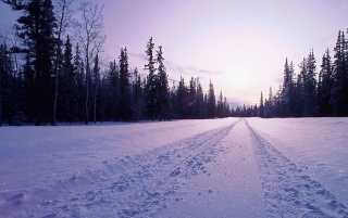 Snow in Road wallpapers and stock photos