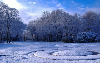Winter in Park wallpapers and stock photos