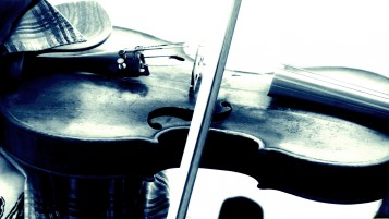 Violin Close-up wallpapers and stock photos