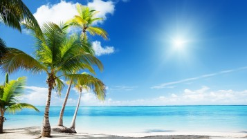 Tropical Beach wallpapers and stock photos