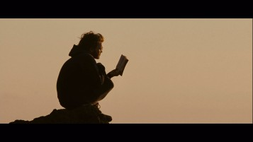 Previous: Into the Wild Sunset